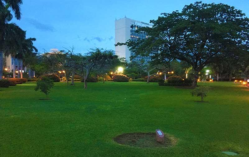 Emancipation Park's Lawn