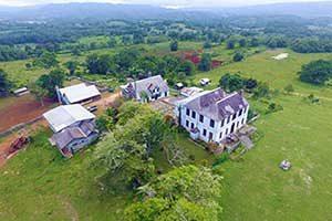 Annandale Estate Ocho Rios