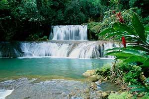 Y S Falls Jamaica