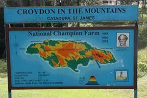 Croydon Plantation in Montego Bay