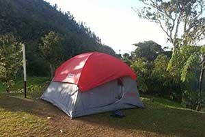 Holywell Park in Blue Mountains Jamaica