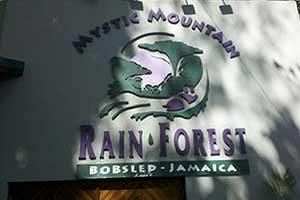 Mystic mountain rainforest in ocho rios